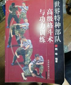 世界特种部队高级格斗术与功力训练