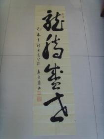 袁吉成:书法:龙腾盛世(四川省广汉市名家)(参展作品)
