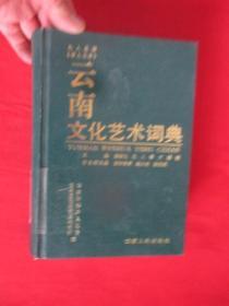 云南文化艺术词典   (大32开,精装)