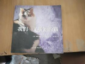 我们一无所知的猫:Conversations With Cat