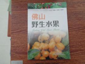 佛山野生水果