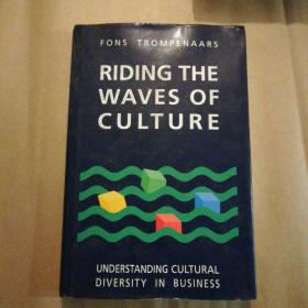 Riding the Waves of Culture: Understanding Cultural Diversity in Business by Fons Trompenaars(经济学)英文原版书