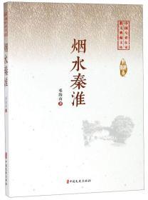 烟水秦淮/中国专业作家小说典藏文库
