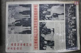 毛主席和林彪同志接见各国作家和朋友