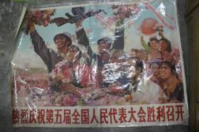 热烈庆祝第五届人国人民代表大会胜利召开