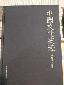 中国文化史迹  西域考古图谱  正版文化艺术