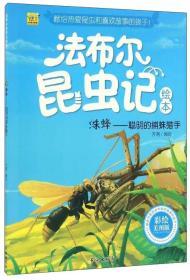 法布尔昆虫记--蛛蜂·聪明的捕蛛猎手(彩绘版)