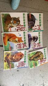 我的动物园:第一辑6册、第二辑9册、第三辑9册  共24册合售 如图    店上
