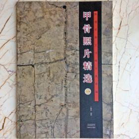 正版殷墟甲骨照片精选一甲骨文考古科研历史文献书法文字研究