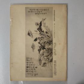 民国珂罗版 画片 【清(张启)】花卉   附原物尺寸等,