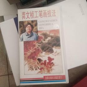 正版录像带龚文桢工笔画技法【35号