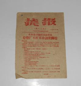 1960年捷报第二二八号 沙市市委办公室编 16开