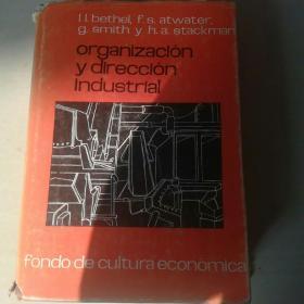 Organizacion y direccion industrial