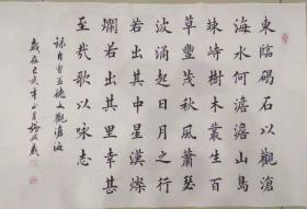 【保真】河南省书协会员、知名书法家张兴义:曹操《观沧海》
