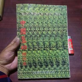 中国气功精华本(纪念中国气功创刊十周年)