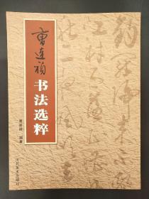 曹连祯书法选粹 河北美术出版社 书法字帖欣赏 正心缘结缘佛教用品法宝书籍