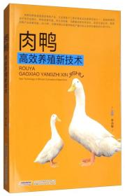 肉鸭高效养殖新技术