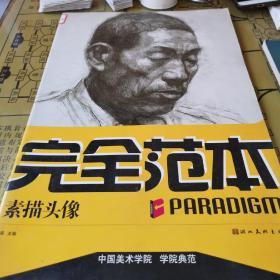 中国美术学院学院典范:色彩静物完全范本