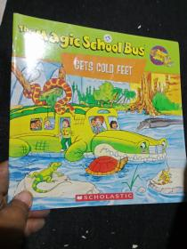The Magic School Bus Gets COLD FEET