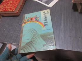 彩图小学生成语词典