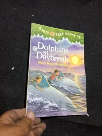 DOLPHINS AT DAYBREAK.