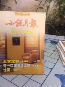 小说月报2007年增刊原创长篇小说专号(2)