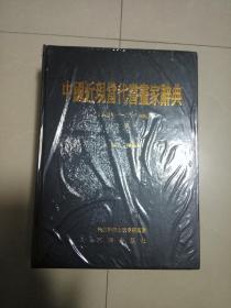 中国近现当代书昼家辞典  (十九世纪    一      二十一世纪)全二卷   上卷   下卷   未折封