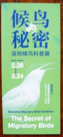 候鸟的秘密-深圳候鸟科普展宣传册