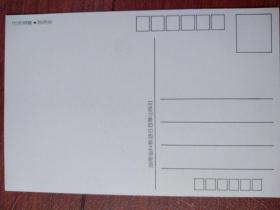 热带鱼明信片2一张,(空白)