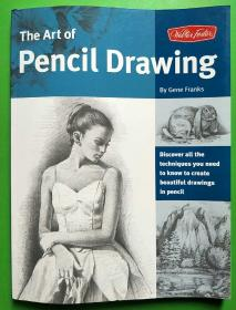 The Art of Pencil Drawing:Discover all the techniques you need to know to create beautiful drawings in pencil