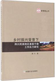乡村振兴背景下四川民族地区基层干部工作压力研究