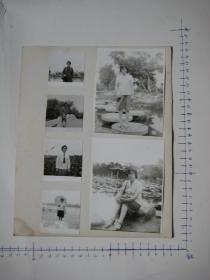 照片 33 【 照片上的合售】