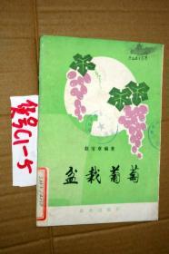盆栽葡萄...赵宝章 著