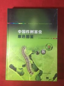 中国柞树害虫原色图鉴〔全新未开封〕