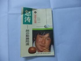怒涛:赵治勲胜局选(超级棋手的精髓)