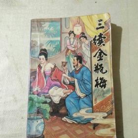 三续金瓶梅  (插图版)