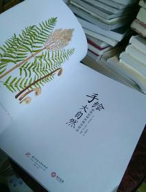 手绘大自然植物绘画风格与技法