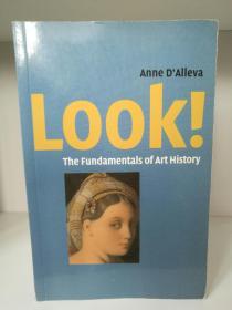艺术史基础 Look! The Fundamentals of Art History  by Anne DAlleva (艺术史)英文原版 图文版