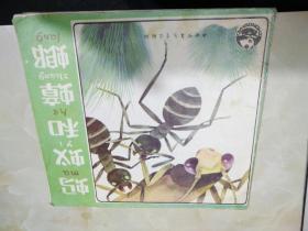 蚂蚁和蟑螂  彩版