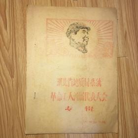 文革资料:湖北省地质局系统革命工人首届代表大会专辑(油印本)