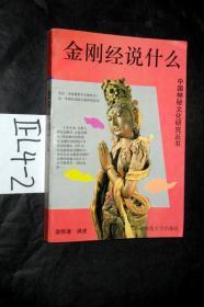 中国神秘文化研究丛书;金刚经说什么..南怀瑾 编