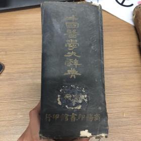 中国医学大辞典 下册