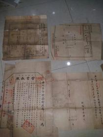民国  管业执照   3大张  广州市市政厅财政局