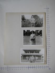 照片 35  【 照片上的合售】