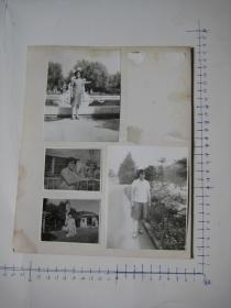 照片  黑白老旧照片  43   【 照片上的合售】
