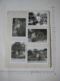 照片  黑白老旧照片  44   【 照片上的合售】