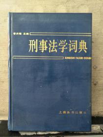 刑事法学词典
