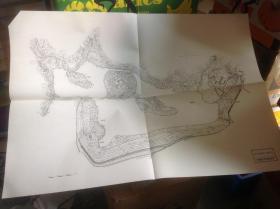 日本有名庭园实测图纸 第四组 9-10号 修学院离宫上御茶屋 + 修学院离宫中御茶屋,下御茶屋  共两张图纸
