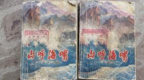 山呼海啸(上下)