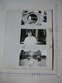 照片  黑白老旧照片  51 【 照片上的合售】